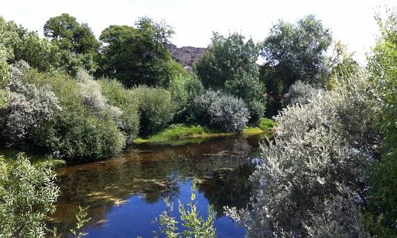 Río Tera