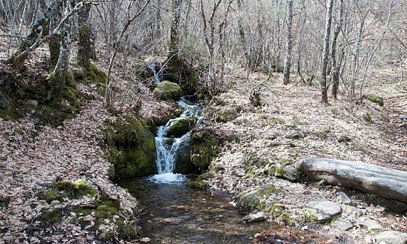 Entorno de la cascada